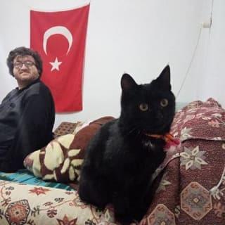 HARUN PEHLİVAN profile picture