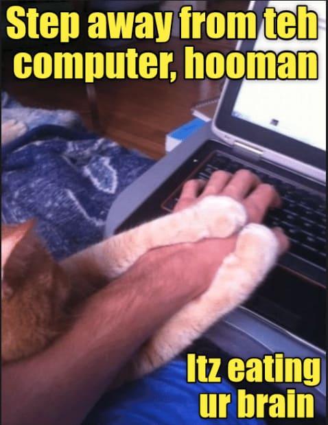 "meme with a cats paw on the computer saying ""Step away from teh computer, hooman itz eating ur brain"""