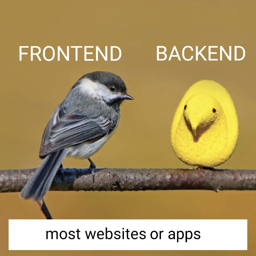 frontend vs backend