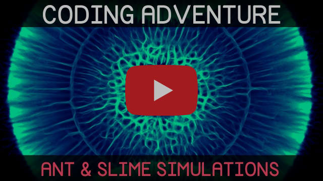 Coding Adventure: Ant and Slime Simulations