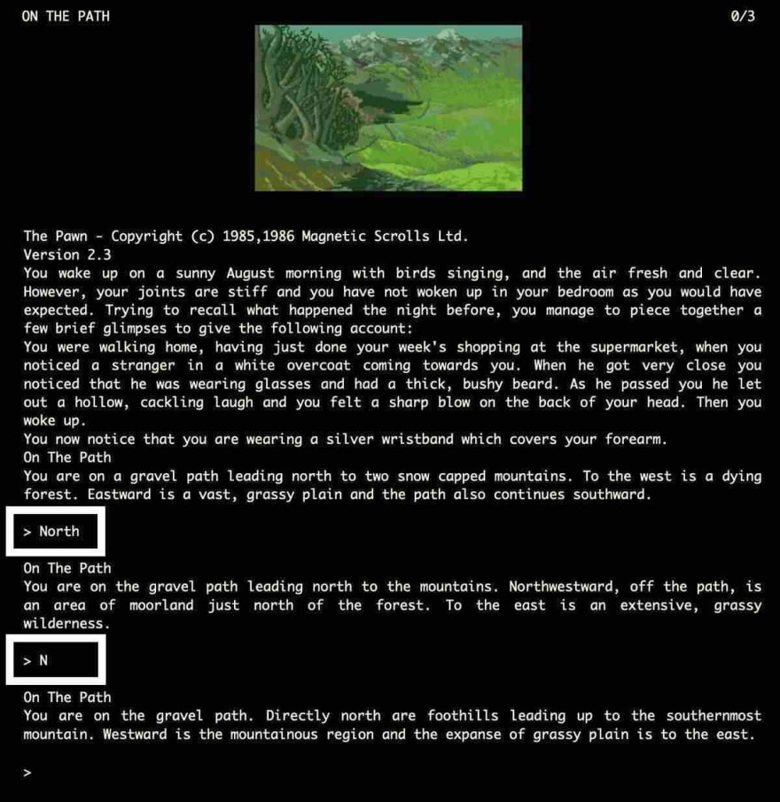 The Pawn, a text-based adventure game by Magnetic Scrolls.