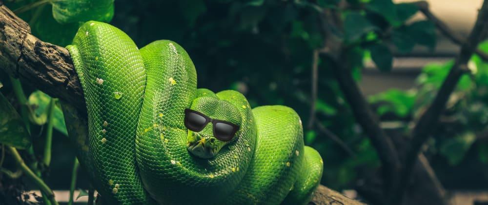 Cover image for More Python Practice: Find the Random Number (ft. Sets!)