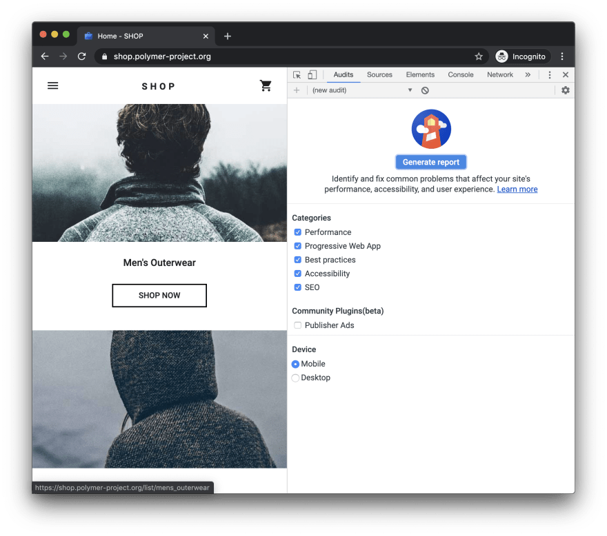 https://developers.google.com/web/tools/lighthouse/images/audits.png