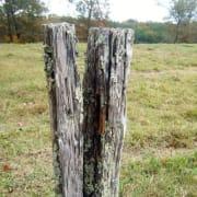 fenceposterror profile