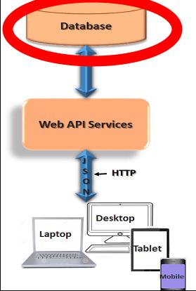 Database Flow of Info to API