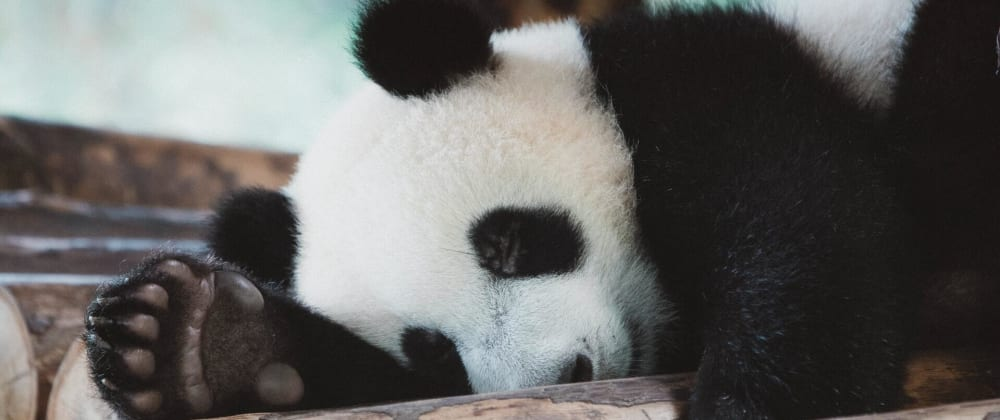 Cover image for Using MongoDB with Pandas, NumPy, and Arrow