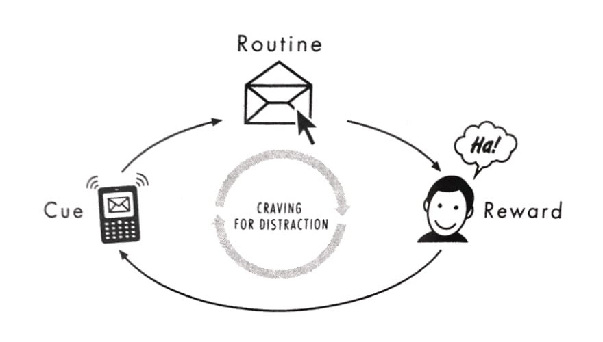 Cue Routine Reward cycle from The Power Of Habit