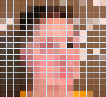 Pixelated view of my profile picture
