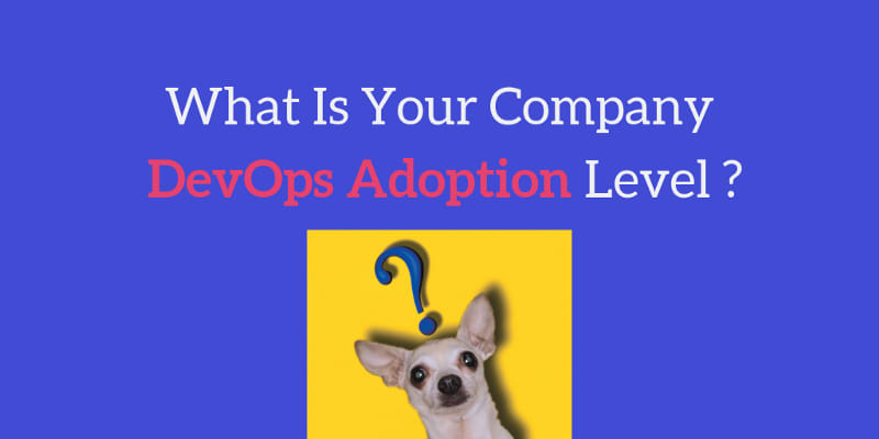 What Is Your Company DevOps Adoption Level?