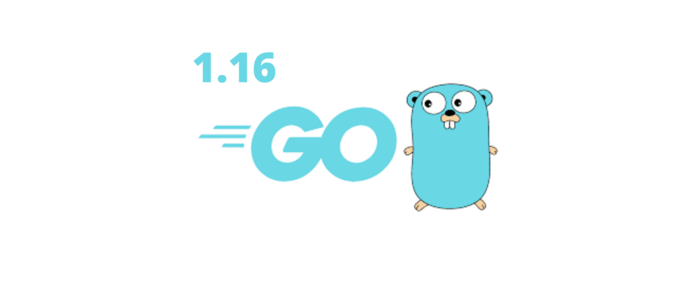 Cover image for What Is Golang Latest Version? - Go 1.16