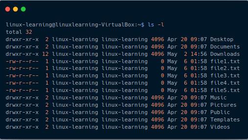 ls command long