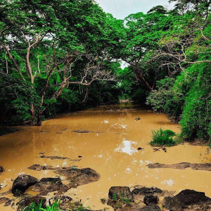 Osun River NFT Art