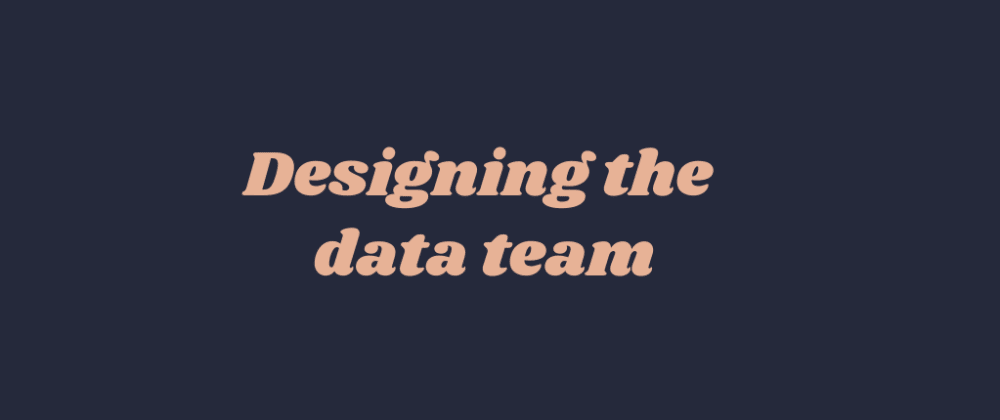Cover image for Designing the data team