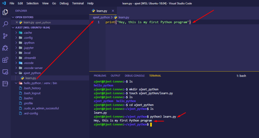 Run your Python program