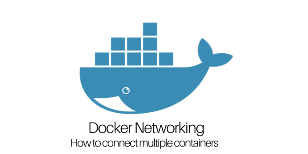 Docker Networking- How to connect multiple containers - DEV