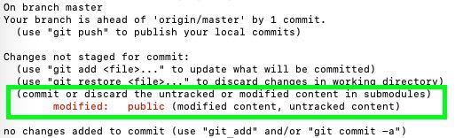 submodule reference in terminal using git status command