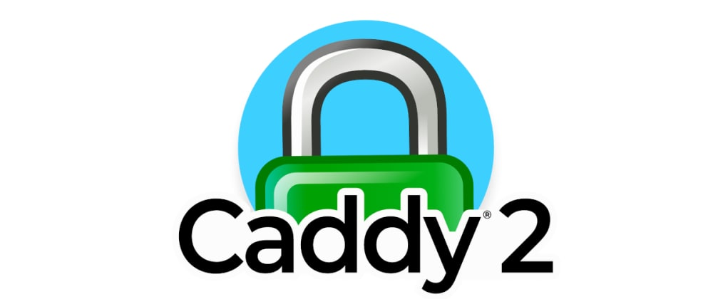 Cover image for Reverse Proxy Multiple Domains Using Caddy 2