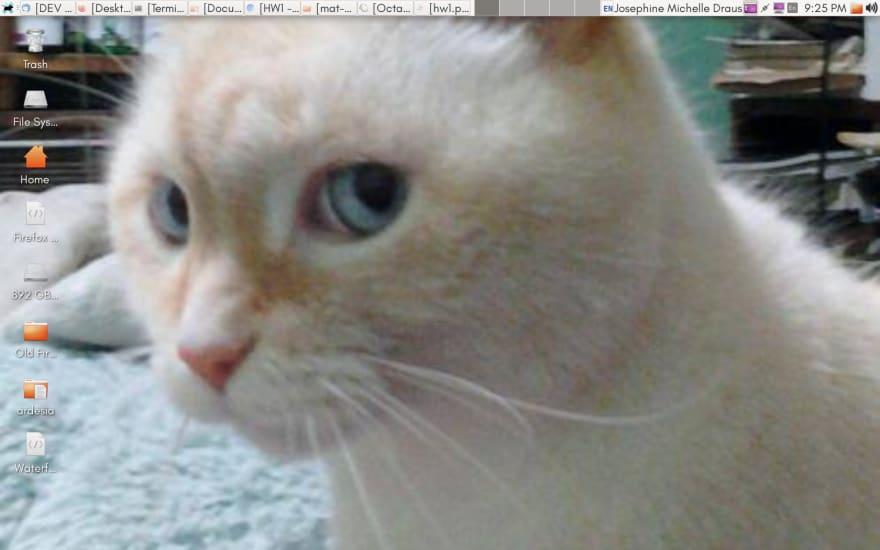 Dell Inspiron Screenshot