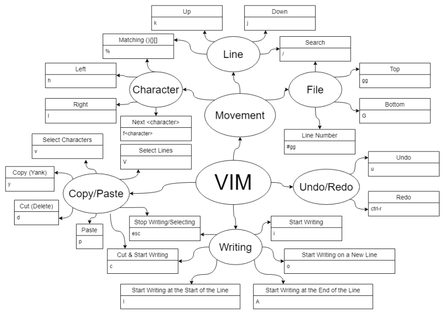Graph with VIM in the center; branching off are Movement, Undo/Redo, Copy/Paste, and Writing; branching off of Undo/Redo are Undo with u and Redo with control r; branching off of Copy/Paste are Select Lines with Shift-V, Select Characters with v, Copy (Yank) with y, Cut (Delete) with d, Paste with p, Cut & Start Writing with c, and Stop Selecting with escape; branching off of Writing are Start Writing with i, Start Writing at the Start of the Line with Shift-I, Start Writing at the End of the Line with Shift-A, Cut & Start Writing with c, and Stop Writing with escape; branching off of Movement are File, Line, and Character; branching off of File are Top with gg, Bottom with Shift-G, Line Number with number-gg, and Search with /; branching off of Line are Search with /, Down with j, Up with k, and Matching Brackets or Parentheses with %; and branching off of Character are Matching Brackets or Parentheses with %, Left with h, Right with l, and Find Next character with f followed by that character