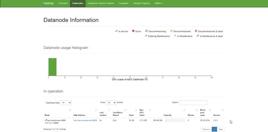 Datanodes Web UI