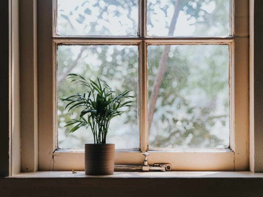 """A good example of an Alt Attribute - """"A single potted plant on a windowsill"""""""