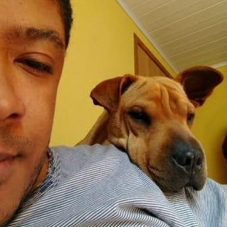 Rafael Batista profile picture
