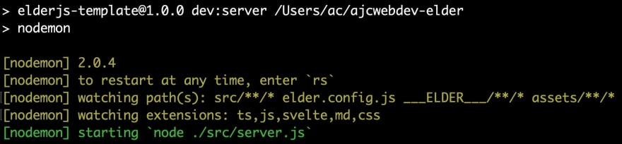 05-npm-dev-server