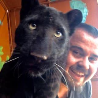 Renaldo Herbst profile picture
