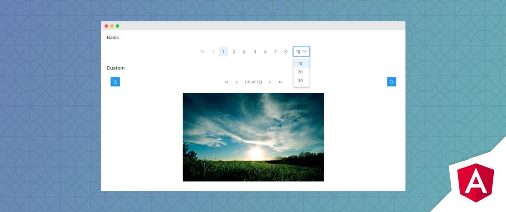 Cover image for Angular Paginator