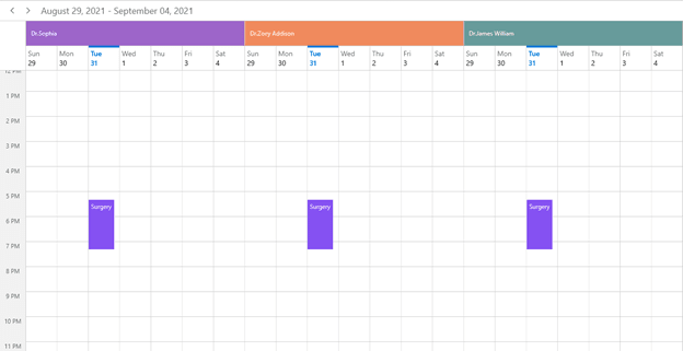 Sharing Appointments to Multiple Resources in WinUI Scheduler