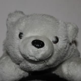 Ruotger Deecke profile picture