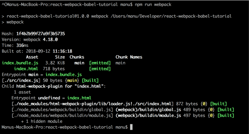 npm run webpack output with webpack.config.js 3