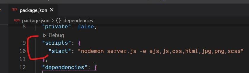 node js server hot reload with nodemon package json file watch filetypes changes
