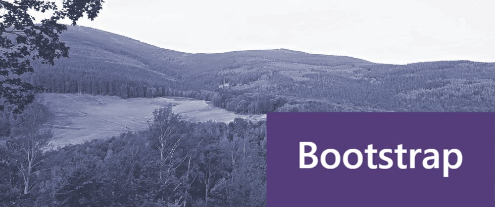 Cover image for Five steps to get personalized Bootstrap