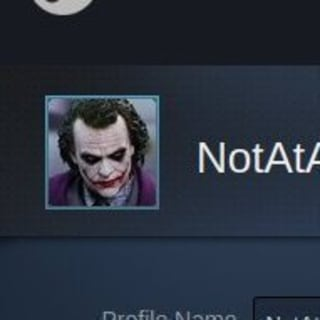 The richest steam account profile picture