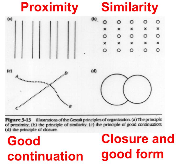 Gestalt organisational principles