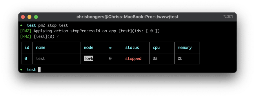 Stopping pm2 command