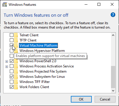 virtual machine platform feature