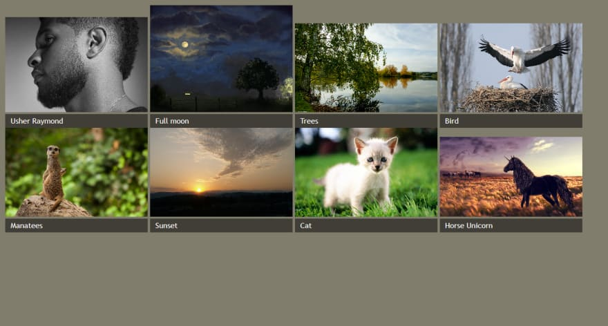 An image gallery with styled captions