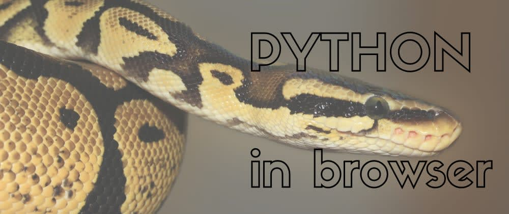 Use Python in your browser client code together with JS. No server required, thanks to Web Assembly