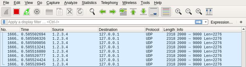 UDP Packets sent seen in wireshark