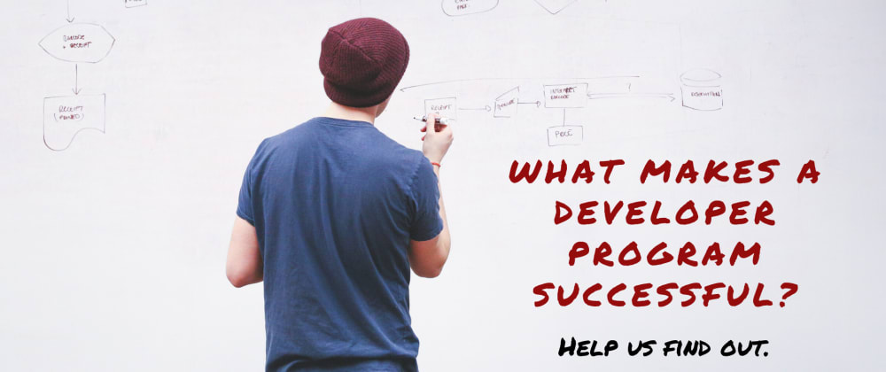 Cover image for What makes a developer program successful?