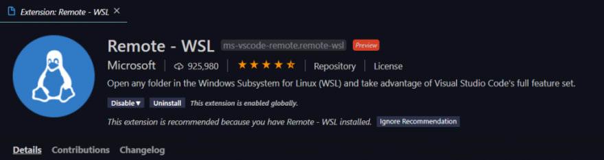 Remote WSL