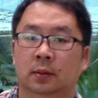 Tony Gu profile picture