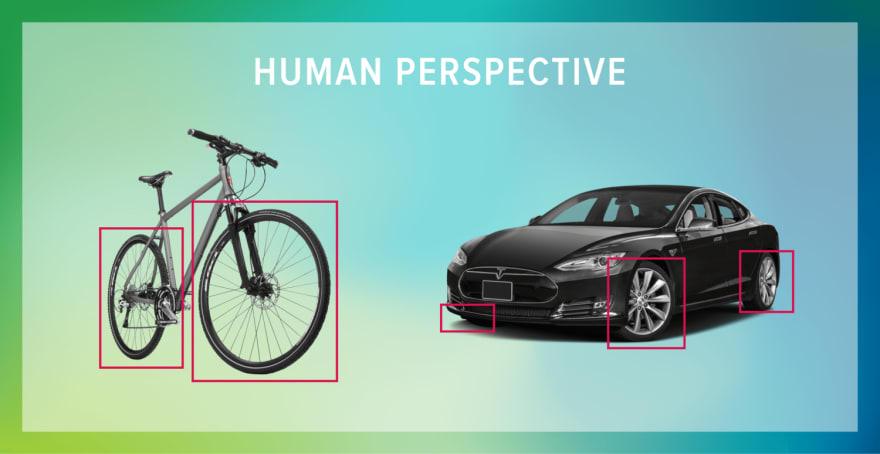 bicycle vs car