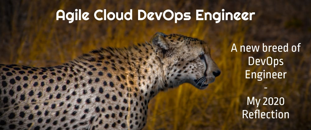 Cover image for Agile Cloud DevOps Engineer