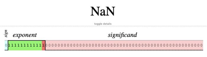 NaN's floating point representation
