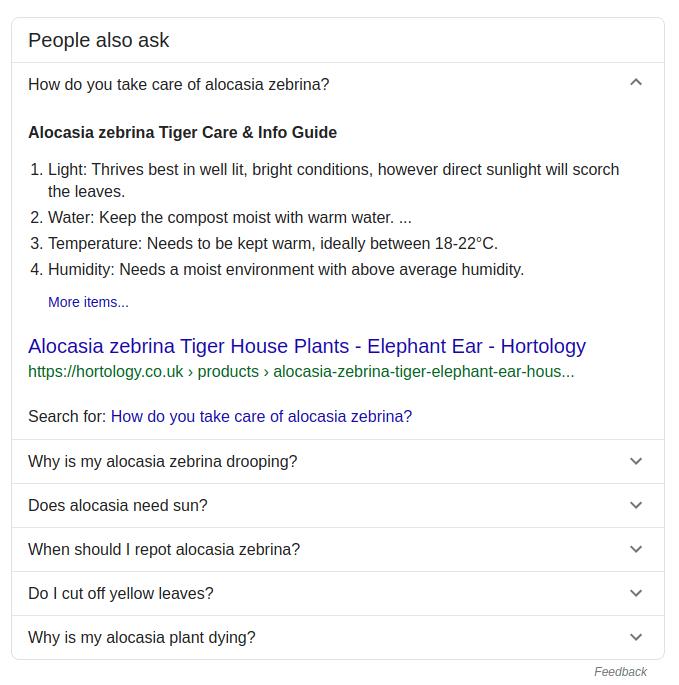 Screenshot of FAQ in Google search results
