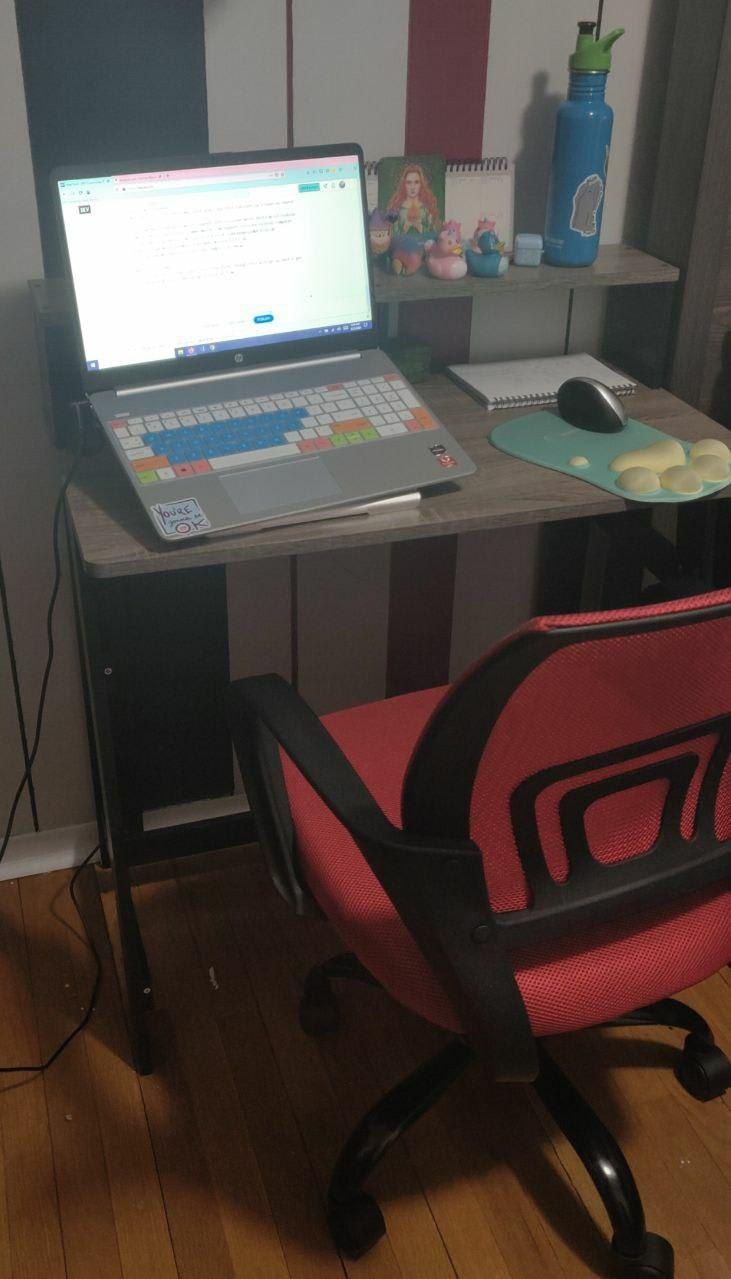 Picture of Pachi's small, affordable and yet comfy and cute home office.