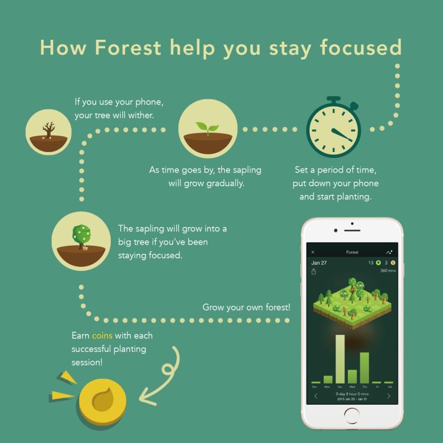 Forest set timer